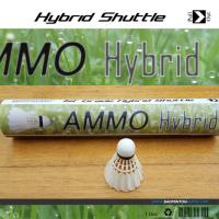 HybridAmmoNews